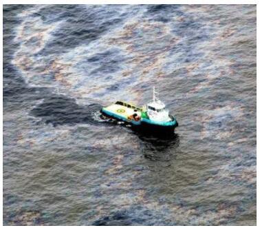 Environmental Impacts on the Brazilian Coast
